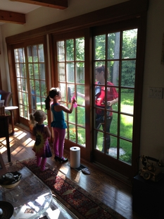 Fish Window Cleaning Highland Park Il Winnetka Lake