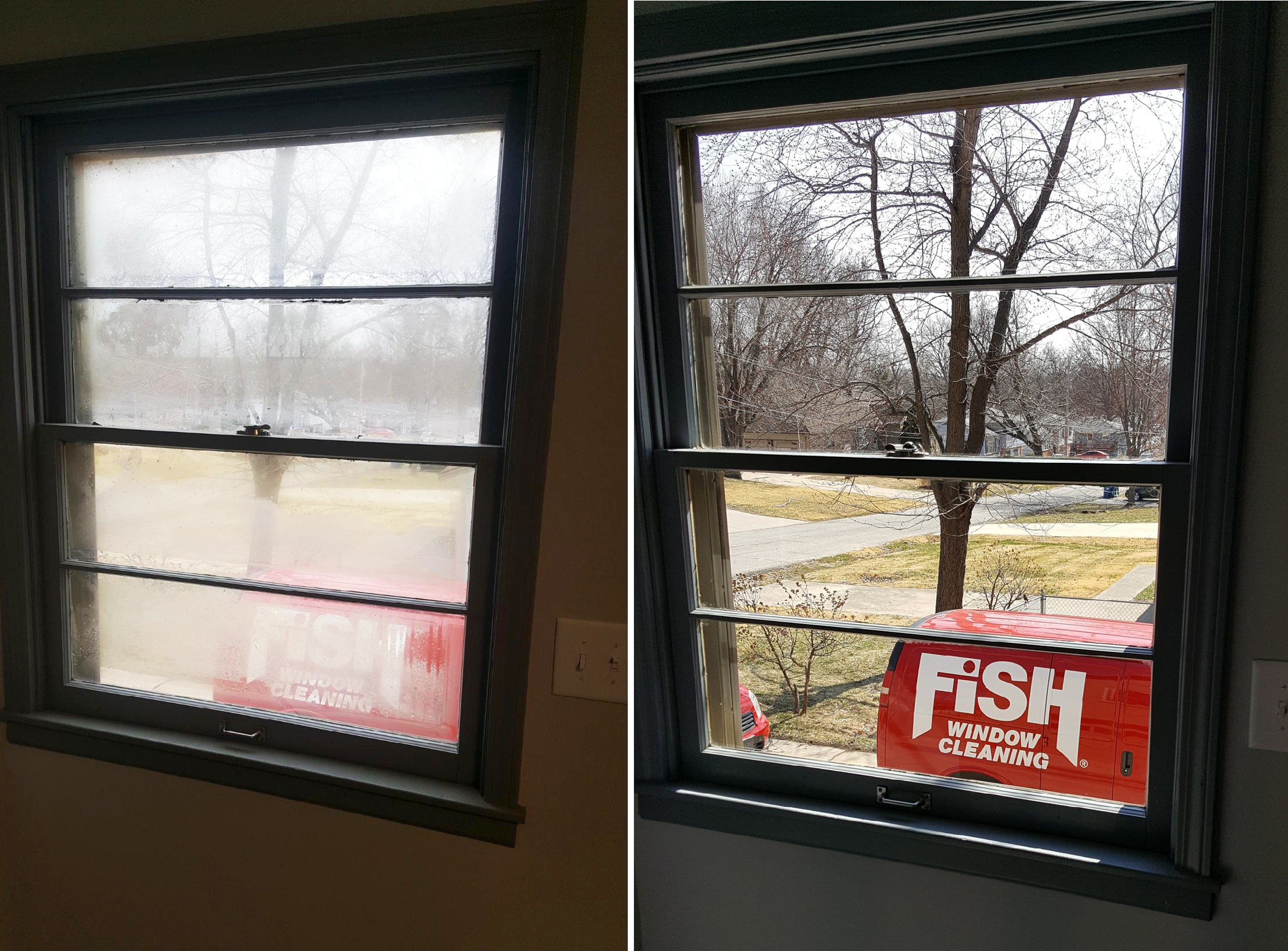 Fish window cleaning photo of fish window cleaning omaha for Fish window cleaning reviews