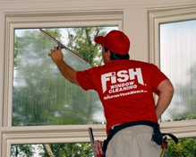 Fish Window Cleaning Littleton Co Highlands Ranch
