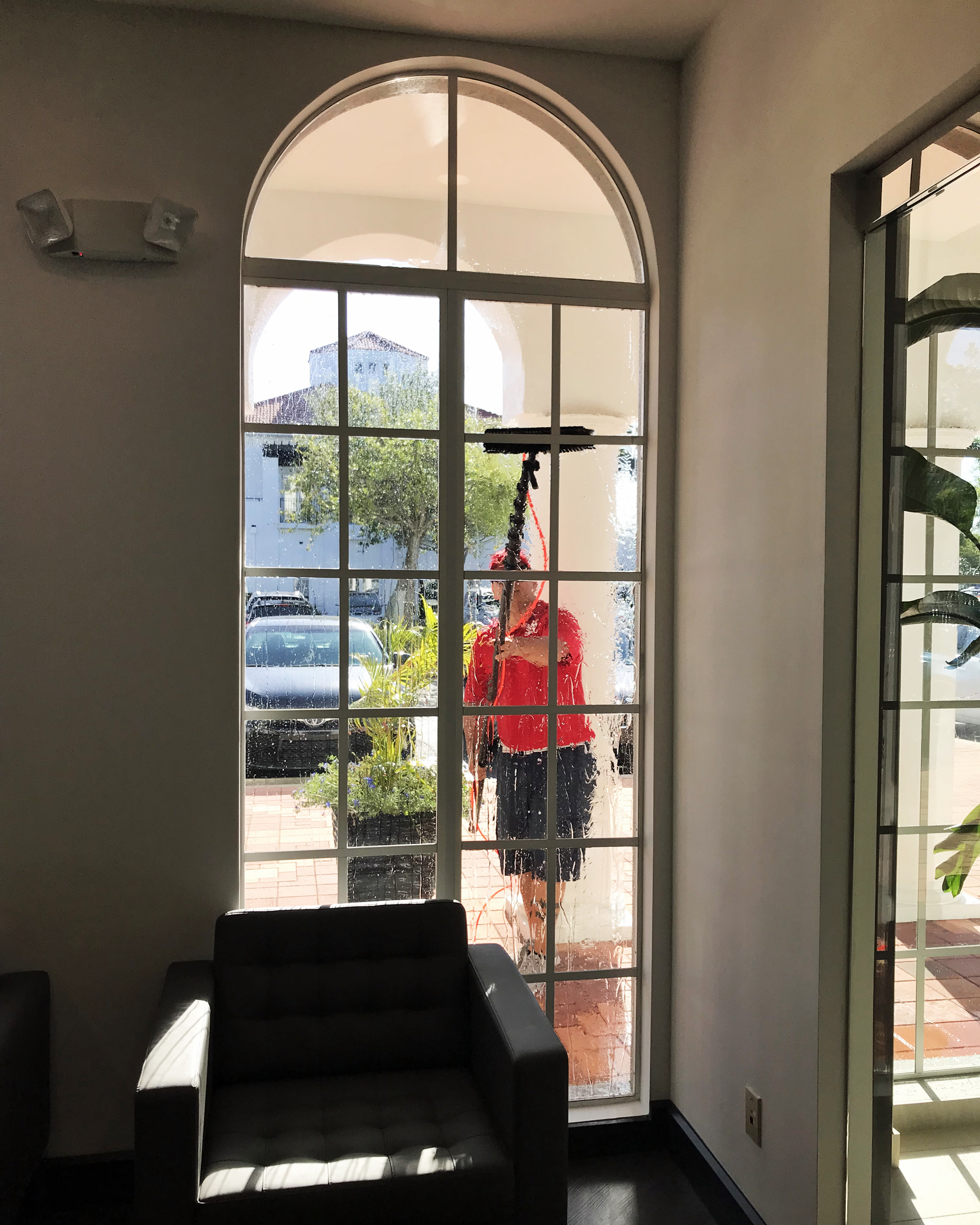 Fish Window Cleaning Naples Commercial Window Cleaning