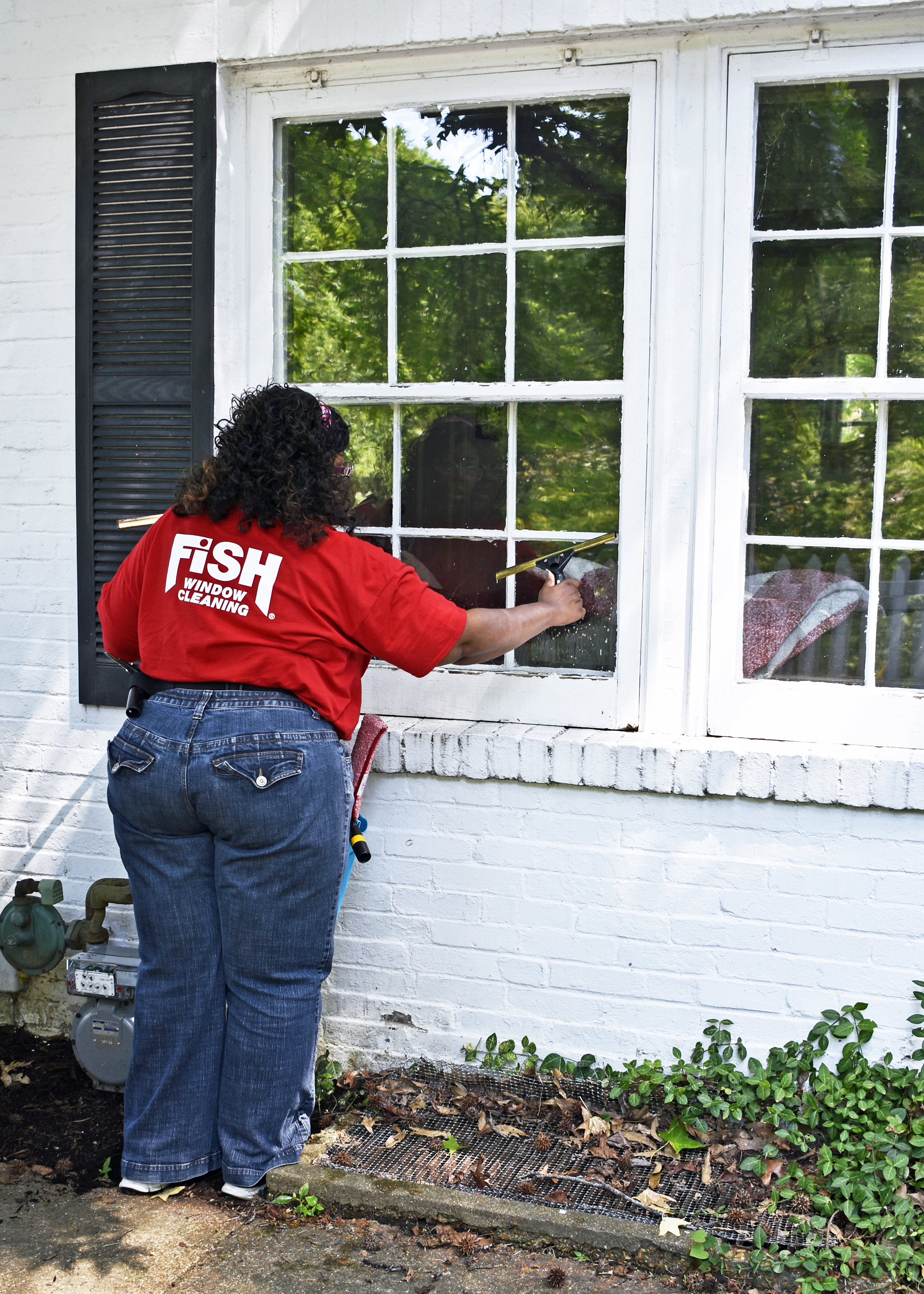 Fish Window Cleaning Cleveland Residential Window Cleaning