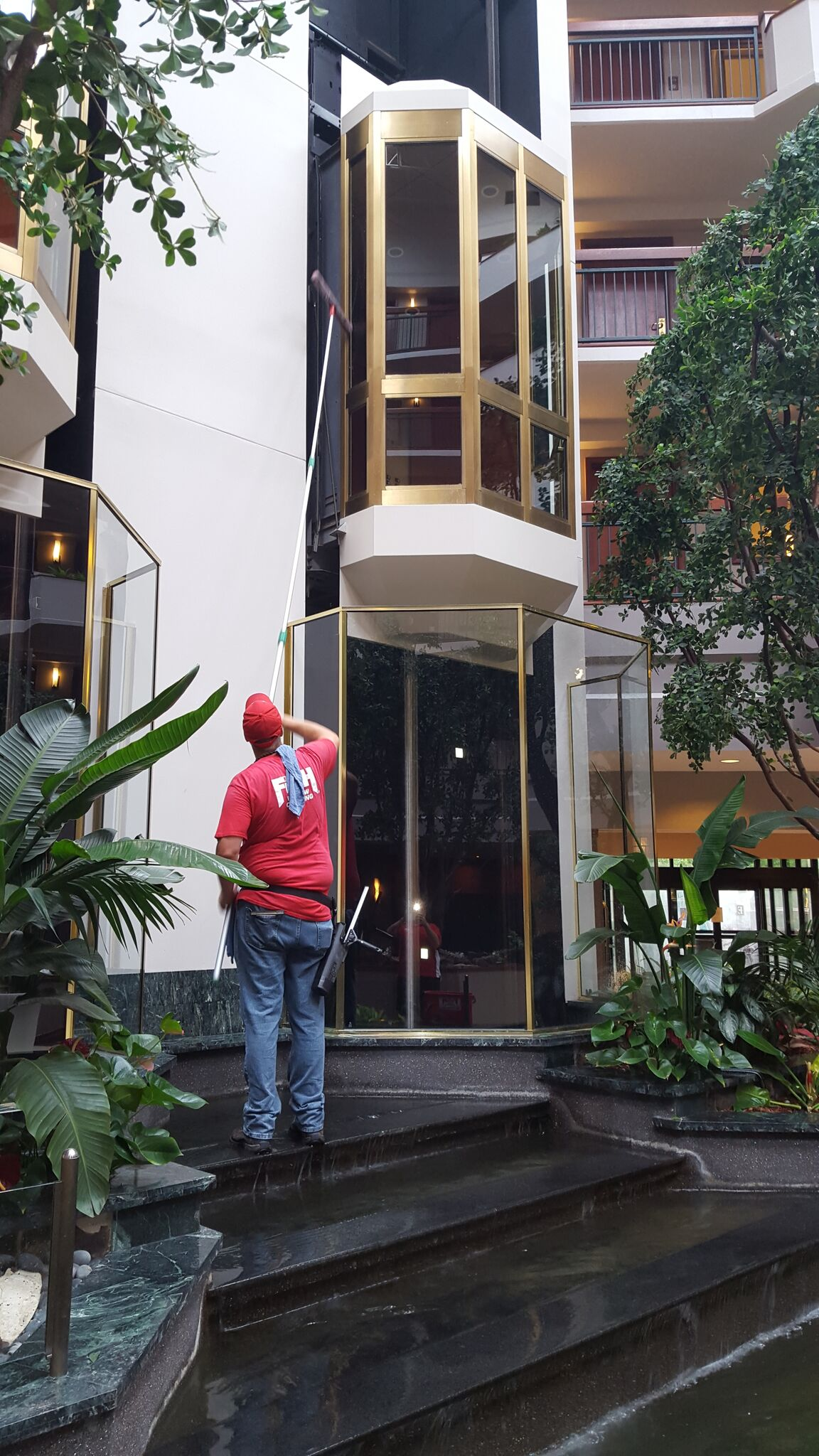 Fish Window Cleaning Dallas Commercial Window Cleaning