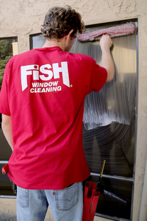 Fish Window Cleaning Lafayette CA Window Cleaner Using Mop